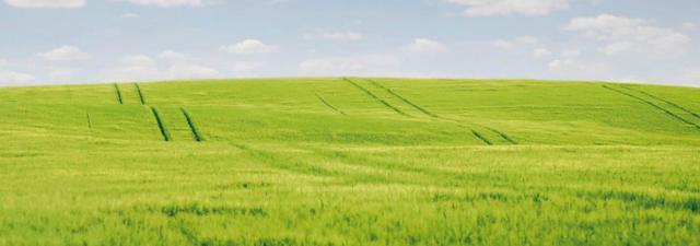 slide_field