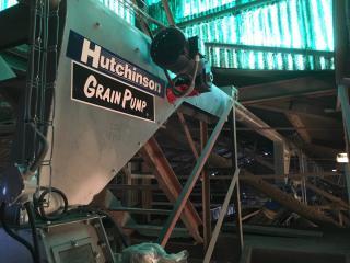 """Grain pump HUTCHINSON 6"""""""
